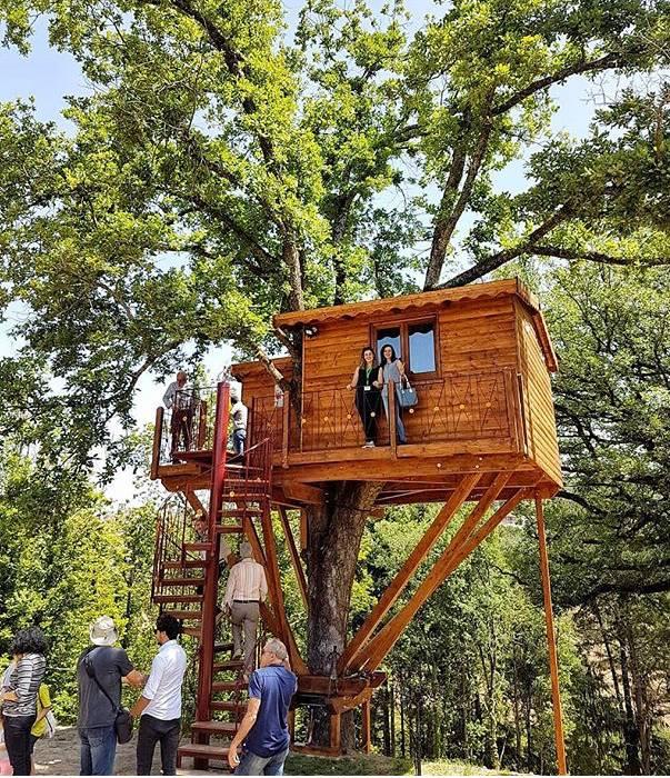 Casa sull'albero Calabria