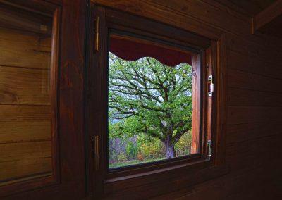 Casa sull albero finestra