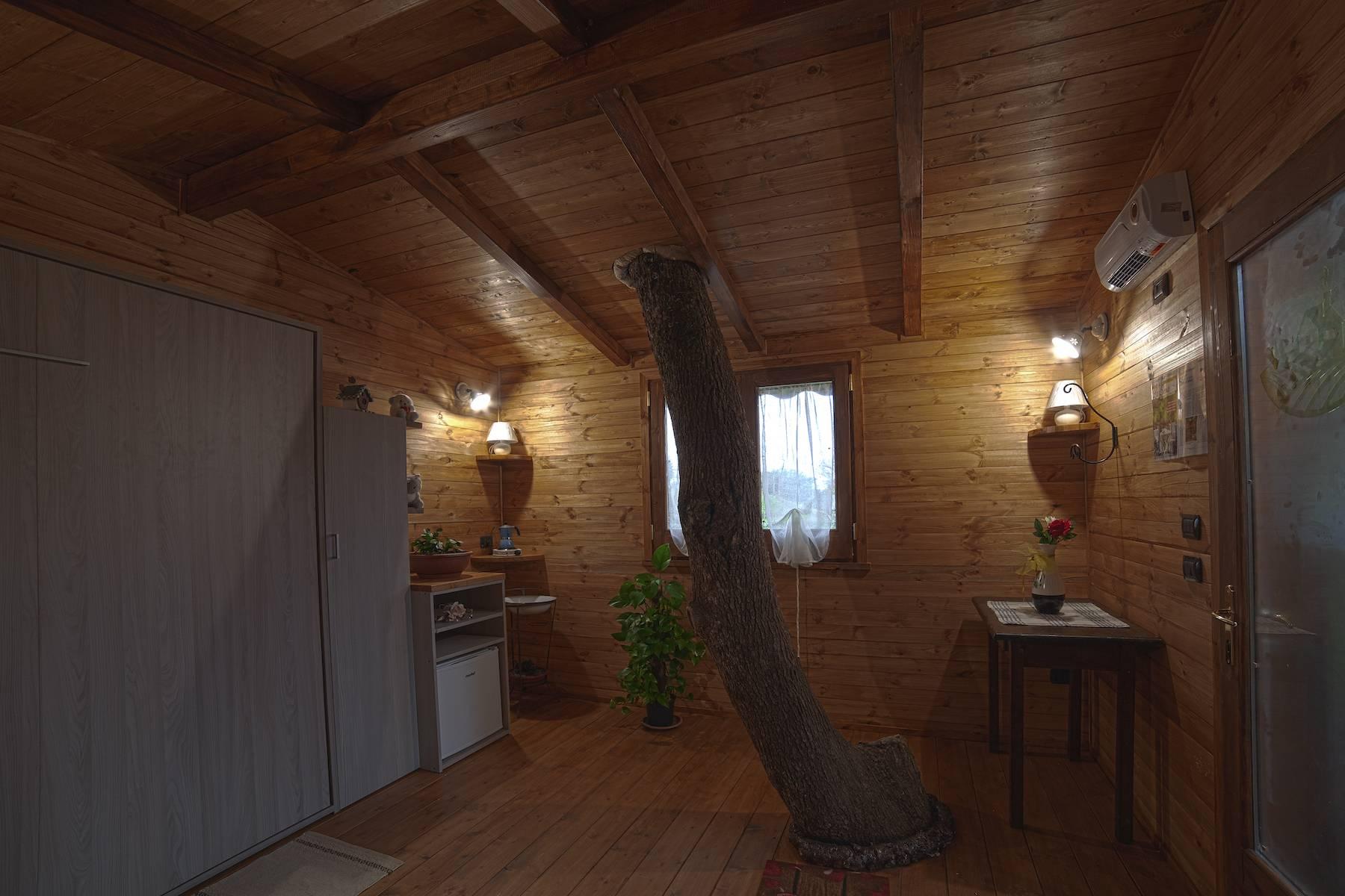 Casa sull'albero interni con tronco