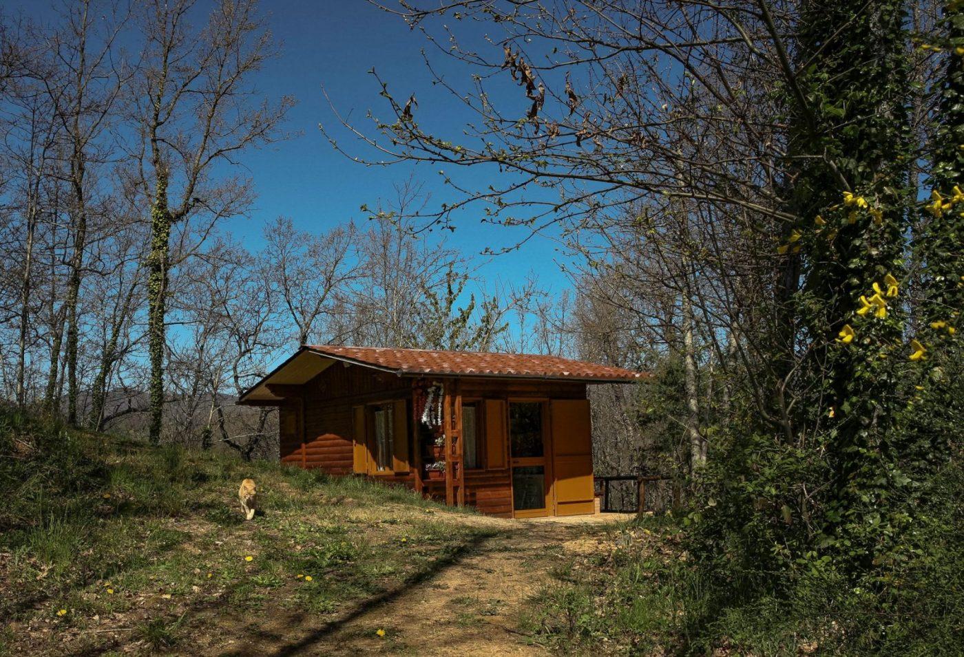 Chalet nel bosco Calabria - Esterno